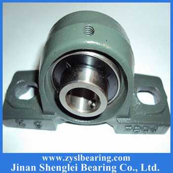 Insert bearing with housing